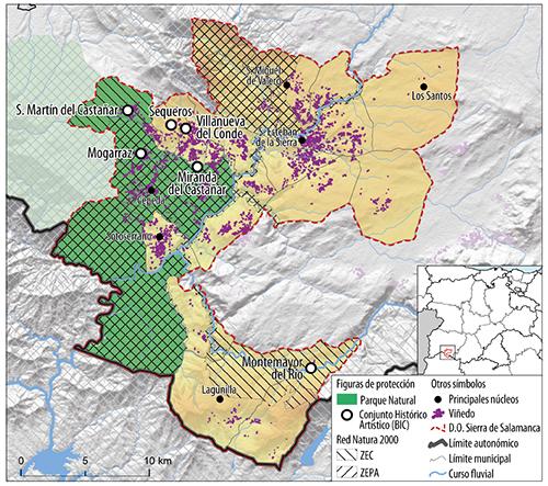 Viñedo y figuras de protección en la DOP Sierra de Salamanca